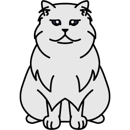 Persian – Chinchilla
