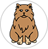story-ir-cats