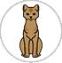 story-sr-cats