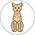 story-ua-cats