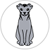 story-uk-cats